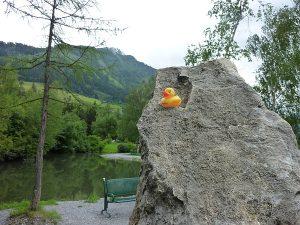 taichiplatzstein